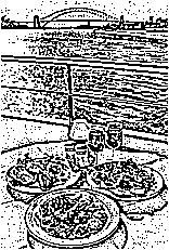 アルファ描画